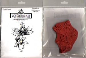 orchidbig