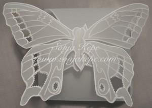 10-metulj-skatlica-2-mala