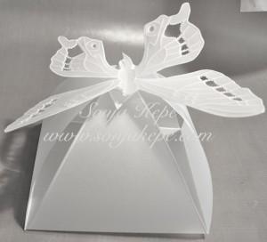 10-metulj-skatlica-mala-copy