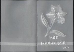 16-lilija_vijolicna-notri-mala